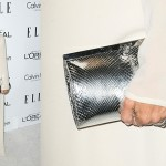 10 Celebs Show Off Their Arm Candies at ELLE Women in Hollywood Affair